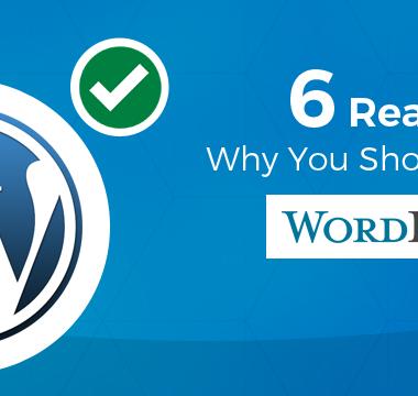 6 Reasons Why You Should Choose WordPress?