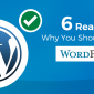 why should choose wordpress