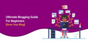 Beginners Guide To WordPress Blogging
